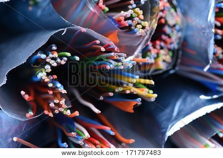Colored copper telecommunication cables and wires closeup