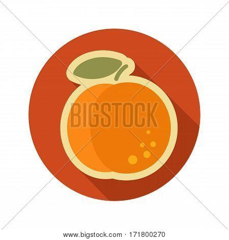 Peach flat icon. Fruit. Vector illustration eps 10