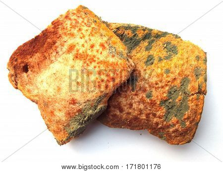 two piece of moldy bread on a white background.
