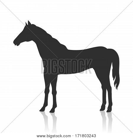 Sorrel horse with white mane vector. Flat design. Domestic animal. Country inhabitants concept. For farming, animal husbandry, horse sport illustrating. Agricultural species. Isolated black on white