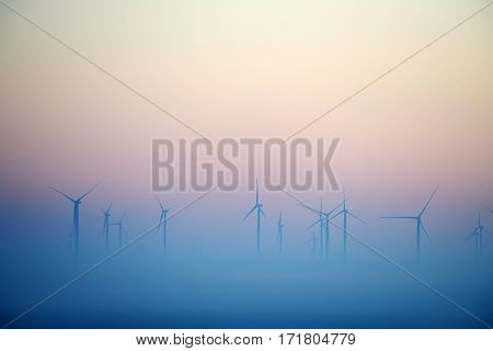 wind turbines on field on foggy morning