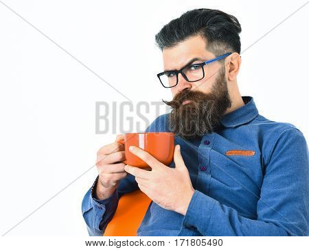 Bearded Man, Brutal Caucasian Hipster With Moustache Holding Orange Mug