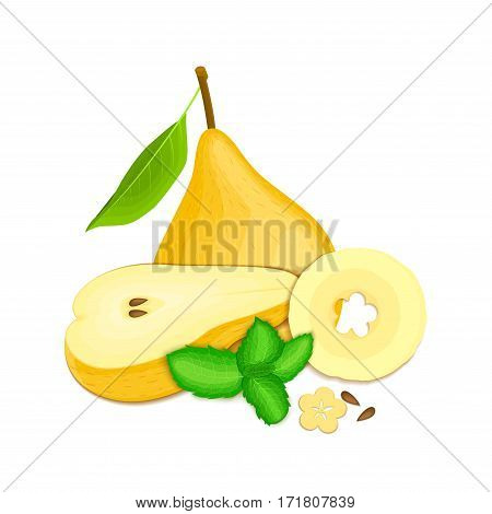 Vector composition of a few yellow pears and mint leaves. Yellow pear fruits appetizing looking. Group of tasty ripe pear with pepper mint leaf packaging design of juice, breakfast, healthy vegan food