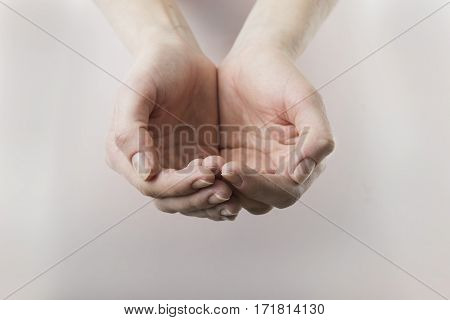 close up of womans cupped hands showing something.