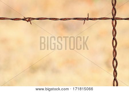 Rusted barbed-wire fence, border or background, with a light brown blurred background and room for text.