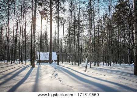 Lonely small hut in the forest in the winter