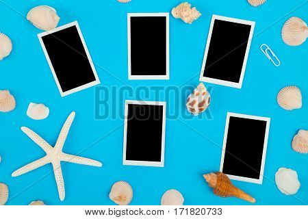 frame of seashell with empty photo frame on colorful background Sea flat lay tropical and aloha travel concept.