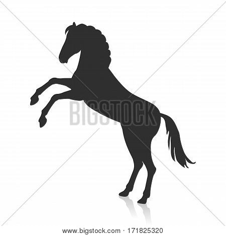 Rearing horse with hind legs vector logo. Flat design. Domestic animal. Country inhabitants. For farming, animal husbandry, horse sport illustrating. Agricultural species. Isolated black on white