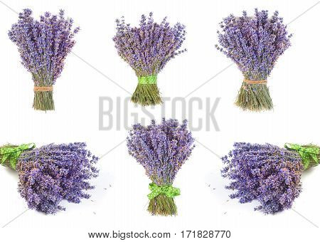 Set of bunches lavender flowers on white background isolated, copyspace