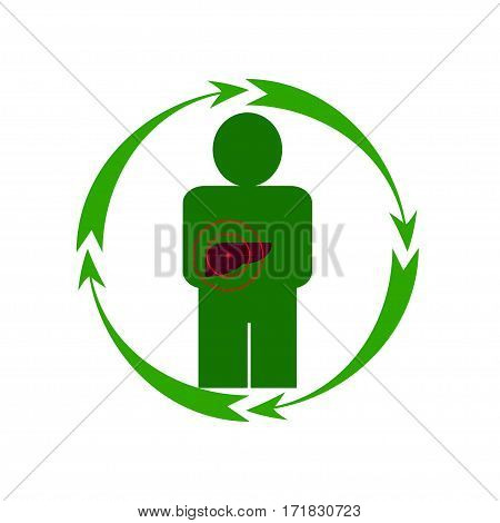 Vector illustration. The emblem logo. The human liver is in danger. Healthy lifestyle. Human. Four arrows around. Different colors.