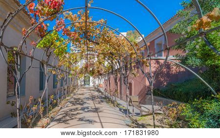 Sunny autumn garden walkway, featuring metal vine growing frame overhead.  Provides for shaded passage to & from washrooms building, located on right, behind Prado Museum in Madrid Spain.