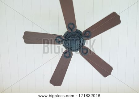 Picture of ceiling fan hanging on the ceiling