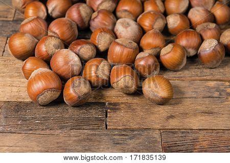A pile of shelled hazelnuts. Macro shot.