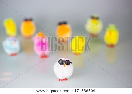 Funny colorful chicks, easter picture, background , postcard