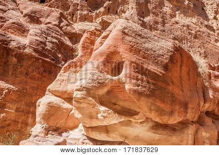 Rocks of pink sandstone resembling elephant head in Siq canyon in Petra, Jordan