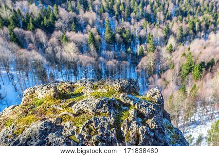 Winter mountains panorama with cliff edge in front and and forest lying beneath rock