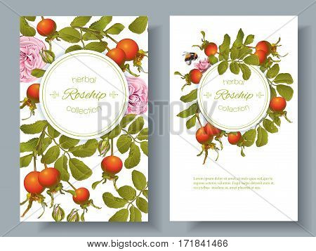 Vector rose hip vertical banners on white background. Design for tea, homeopathy, herbal cosmetics, health care products. With place for text