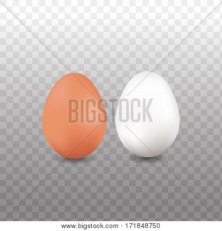 Chicken egg and Duck egg isolated on transparent background