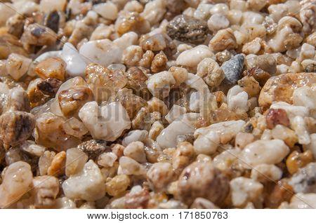 Sea pebble stone macro texture background close
