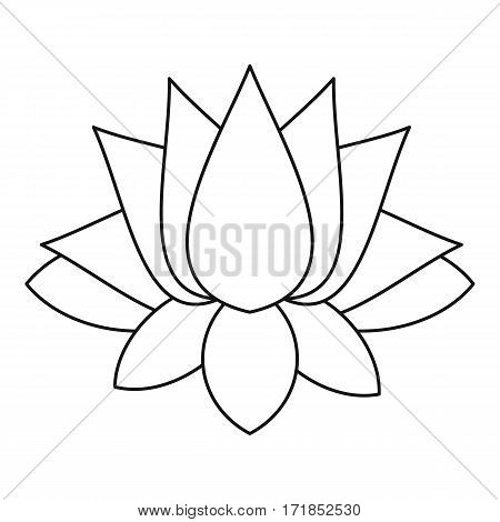 Lotus icon. Outline illustration of lotus vector icon for web