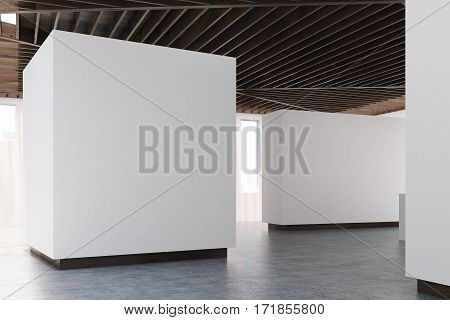 Art Gallery Concrete Floor, Wooden Ceiling, Side