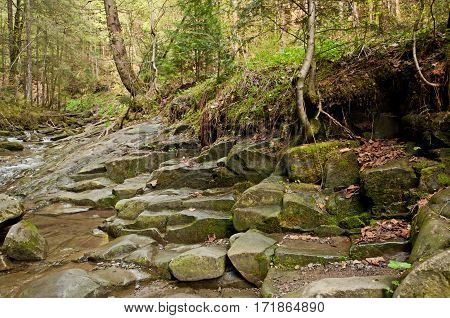 The wet stones near mountain river in spring. Carpathians mountains in Ukraine