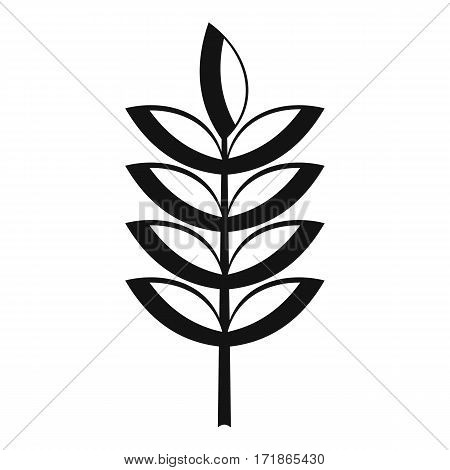 Rye spica icon. Simple illustration of rye spica vector icon for web