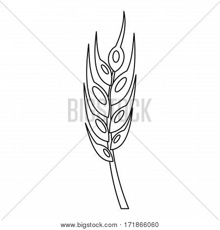 Barley spike icon. Outline illustration of barley spike vector icon for web