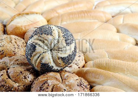 different kinds of rounded buns on white background