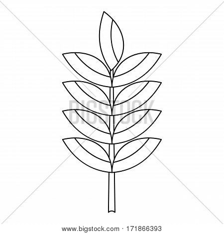Rye spica icon. Outline illustration of rye spica vector icon for web