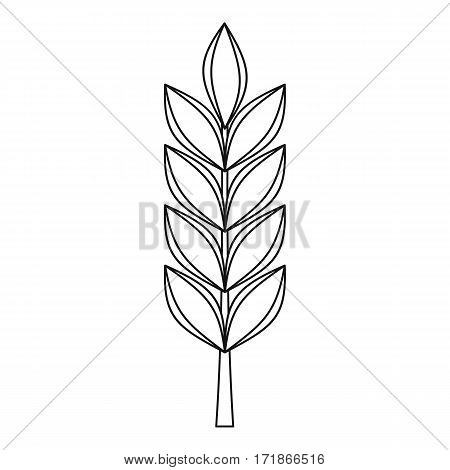 Wheat spike icon. Outline illustration of wheat spike vector icon for web