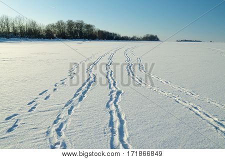 Human footprints in the snow go into the distance towards the horizon.