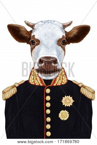 Portrait of Cow in military uniform. Hand-drawn illustration, digitally colored.