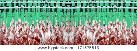 Pork meat hanged on a hooks in a butchery on a green screen