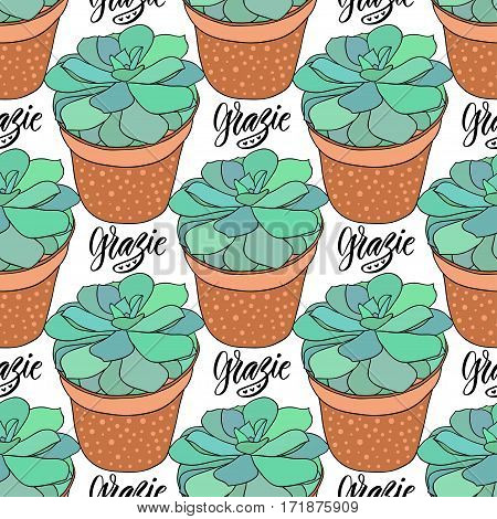 Succulents seamless pattern. Vector illustration. Home decoration. Grazie thank you in Italian