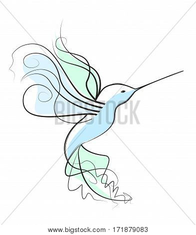 Vector illustration of a hummingbird. Bird on a white background