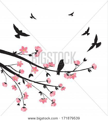Vector illustration of decorative branches with flowers and birds. Spring sakura blossom