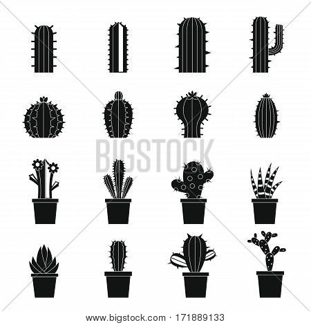 Different cactuses icons set. Simple illustration of 16 different cactuses vector icons for web