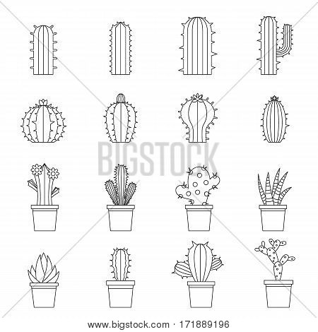 Different cactuses icons set. Outline illustration of 16 different cactuses vector icons for web