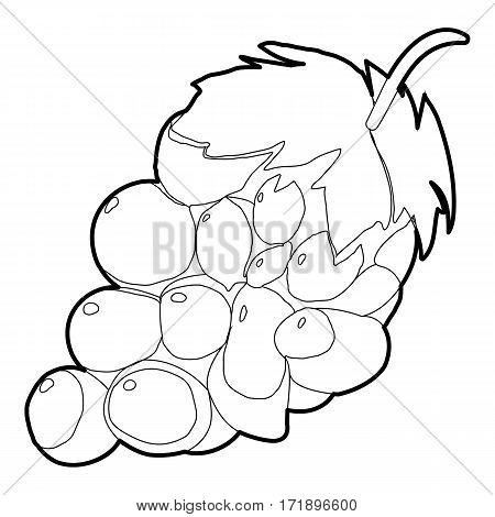 Grape icon. Outline illustration of grape vector icon for web