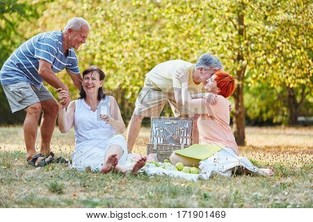 Group of senior citizens having fun during a picnic in the park in summer