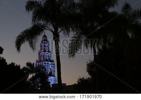 Iconic California Tower in Balboa Park, San Diego, illuminated with purple light at night viewed through palms