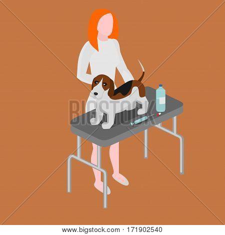 Doctor with dog. Vet clinic. Cartoon woman veterinarian healing dog. Animal nurse