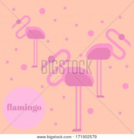 Pink flamingo isolated on background. Exotic bird. Cool flamingo decorative flat design element. Wildlife zoo cute cartoon bird