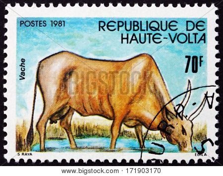 BURKINA FASO - CIRCA 1981: a stamp printed in Burkina Faso shows Cow farm animal circa 1981