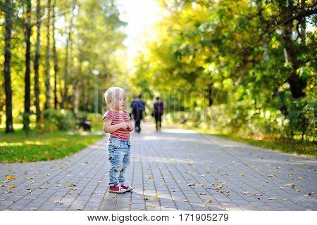 Little Boy Walking And Enjoying Autumn Leaves