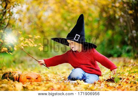Little Wizard Outdoors