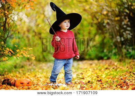 Little Wizard Outdoors Portrait