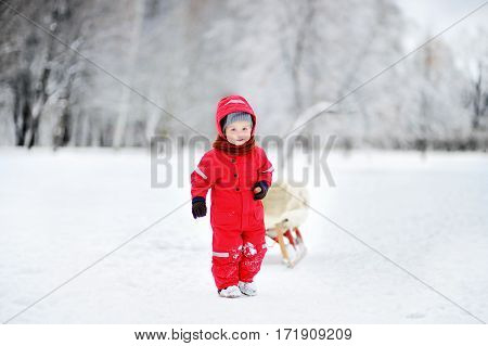 Toddler Kid Riding A Sledge. Children Play Outdoors In Snow.