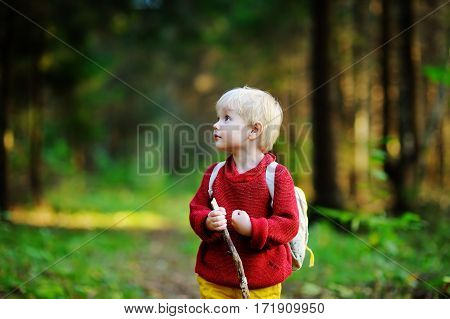 Portrait Of Little Boy Walking During The Hiking Activities In Forest